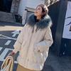 小个子刺绣羽绒服女2018流行网红冬装东大门x2时尚中长款外套