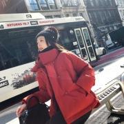 夏诗文定制 白鹅绒短款羽绒服小个子外套女冬2018时尚廓形面包服