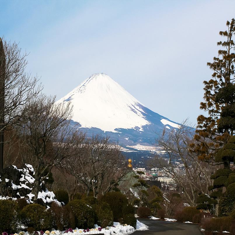 日本7月上海到日本旅游本州6日双温泉品质之旅